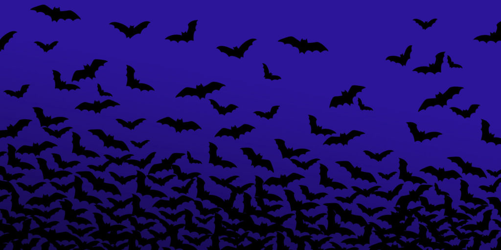 night frights evelle bats blue